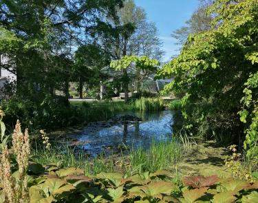 Dundee Botanic Gardens